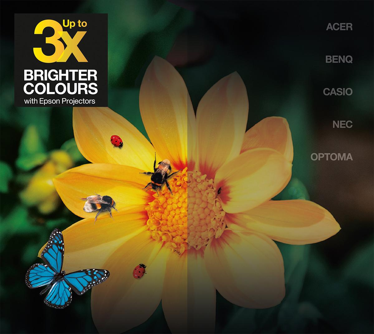 Epson Color Brightness | Comparación de los proyectores Epson con otros fabricantes